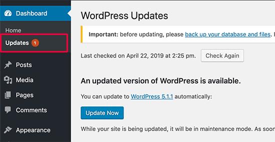 updating wordpress in website dashboard