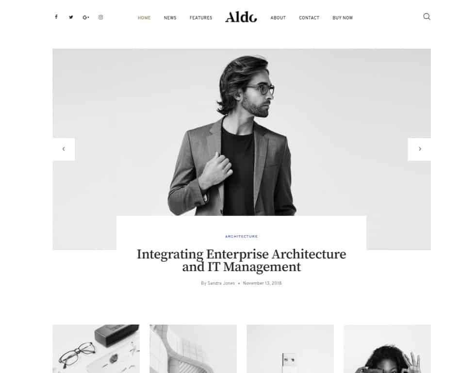 aldo wordpress theme