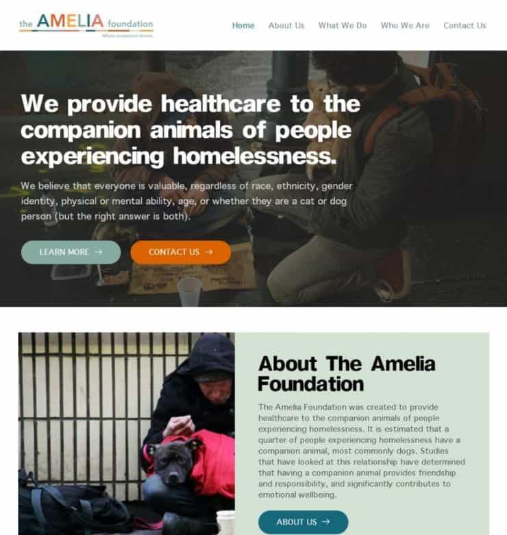 the amelia foundation website