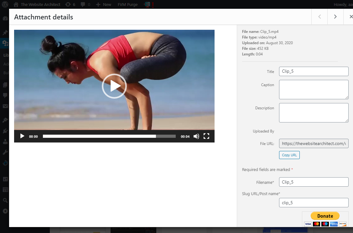 video in wordpress panel